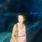 Акула в Siam Ocean World, с мамой